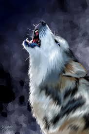 australian shepherd wolf wolf howl by masterdragon09 on deviantart