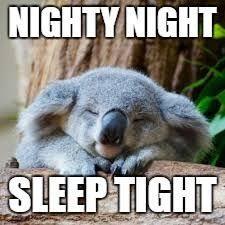 Koala Meme Generator - sleepy koala meme generator imgflip memes i ve made pinterest