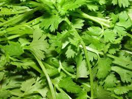 les herbes aromatiques en cuisine les plantes aromatiques dans la cuisine du sud est asiatique
