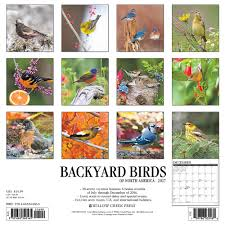 amazon com backyard birds 2017 wall calendar 9781682340165