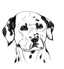 101 dalmatians coloring pages print dalmatian dog 102