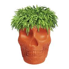 small planter buy qeeboo mexico skull small planter amara