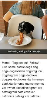 Bacon Strips And Bacon Strips Meme - 25 best memes about gif reaction gif reaction memes