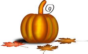 free vector graphic pumpkin thanksgiving foliage free image