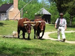 file farmer at colonial williamsburg stierch jpg wikimedia commons