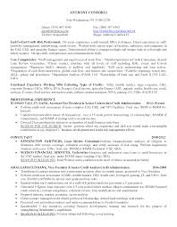 Portfolio Resume Examples by Resume Portfolio Manager Resume