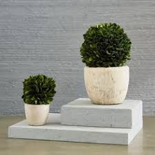 West Elm Vases Pure White Ceramic Vases St Kilda Pinterest Ceramics White