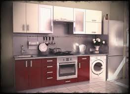 Designs Of Small Modular Kitchen Amusing Modular Kitchen Designs For Small Kitchens L Shaped Pics