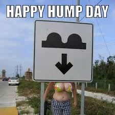 Happy Hump Day Memes - happy hump day bitches by 1p2bfishy meme center