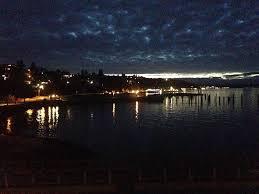 Zoo Lights Pt Defiance by Comfort Inn Tacoma Wa Booking Com