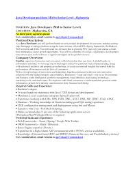 Roles And Responsibilities Of Net Developer Resume Java Developer Responsibilities Accounting Resume Objectives Examples