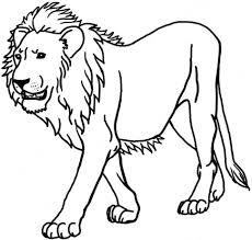 coloring free printable jungle animal coloring sheets sheetsfree