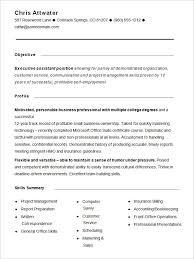 Profile On Resume Examples by Cv Profile Examples Finance