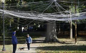 halloween city lexington ky giant spider web pops up in lexington u0027s woodland park lexington