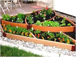 backyards splendid easy backyard vegetable garden ideas design