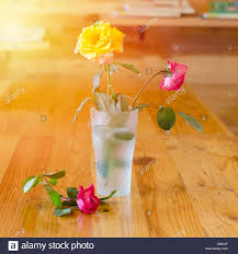 dead rose in vase withered stock photos u0026 dead rose in vase