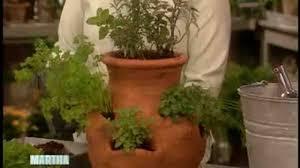 herbs indoors video how to grow herbs indoors martha stewart