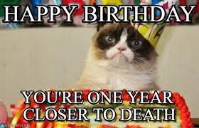 Cat Happy Birthday Meme - happy birthday grumpy cat birthday meme on memegen