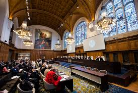 looking back the 1996 advisory opinion of the international court