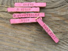 baby shower clothespin dainty posies baby shower clothespins