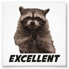 Evil Raccoon Meme - evil raccoon meme no text annesutu