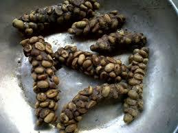 Luwak Coffee luwak coffee special taste coffee cnn ireport