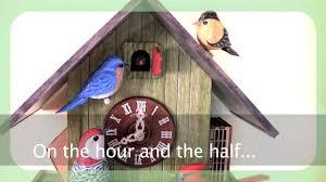 Ebay Cuckoo Clock The Backyard Birds Cuckoo Clock Youtube