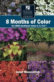 best 25 zone 4 perennials ideas on pinterest purple perennials