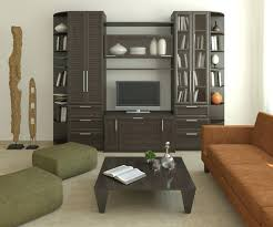 Tv Units For Living Room Curio Cabinet Top Modern Curio Cabinet Tv Cabinets Stunning