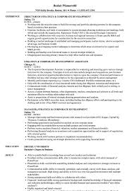 corporate resume exles strategy corporate development resume sles velvet