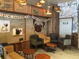 Second Hand Furniture Shops Guildford Esquires Coffee Guildford Hosts Pug Cafe Esquires Coffee