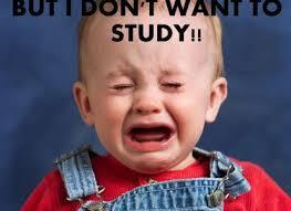 Med School Memes - med school finals humerushumorous