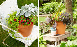 southeast gardening water container garden