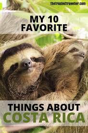 Hidden Canopy Treehouse Monteverde by Best 25 Costa Rica Sloth Ideas On Pinterest Costa Rica Costa