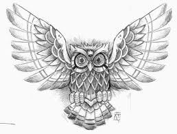 owl with open wings design s