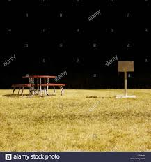 a picnic table and barbecue in a park at night long exposure