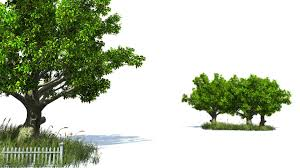 free hd backgrounds 3d animated tree and grass american