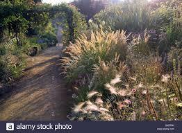 cambo walled garden fife scotland uk autumn pathway border