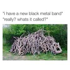 i seen the whole of the new black metal band