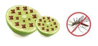 natural mosquito repellents best natural diy lime and clove mosquito repellent step into my