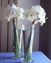 spring floral arrangements martha stewart