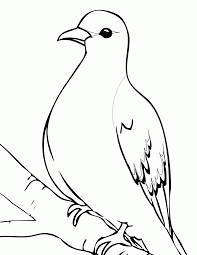free dove coloring page coloring home