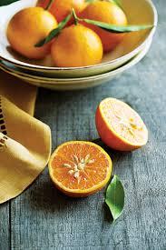 favorite citrus trees sunset