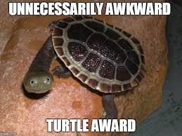 Turtle Memes - turtle meme meme generator imgflip