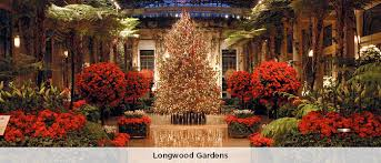 Flowers In Wilmington De - 12 ways to experience holiday magic in greater wilmington delaware