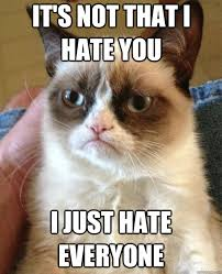 I Hate Everyone Meme - it s not that i hate you cat meme cat planet cat planet