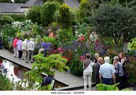 dillons floral helen dillon garden dublin stock photos helen dillon garden