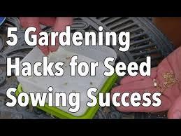 376 best how to start a garden images on pinterest garden