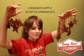 pimpandhost uploaded on february 13 2016 homemade cinnamon apple scented ornaments happy trails wild tales
