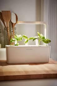 herb garden starter kit home outdoor decoration